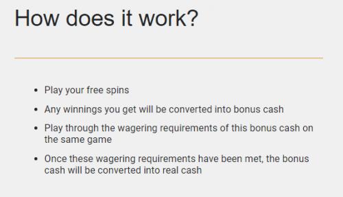 How does free spins bonus work