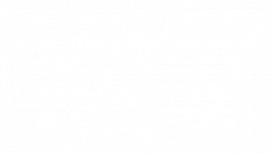 Terms-and-Conditions-logo