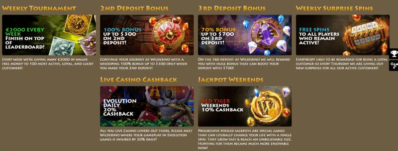 Wilderino casino NZ promotions