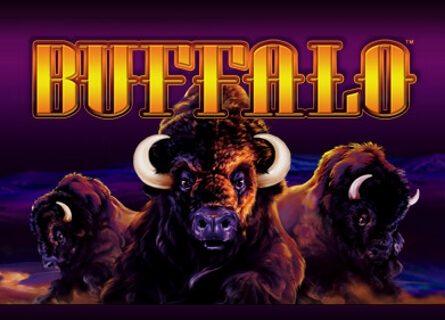 Buffalo Slot (Online Pokie) (Aristocrat) Logo